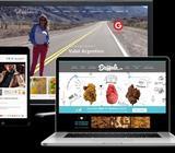 Se Crean Páginas Webs Económicas