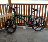 Bicicleta Panga Rines de Lujo