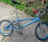 Bicicleta Caballo Largo Rines de Lujo
