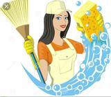 Necesitas Que Limpie Tu Casa O Apartamen