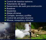 Fumigacion 100 Garantizadas