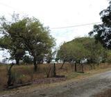 Amplio Terreno en Venta, en San Carlos wasi_1111266