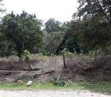 Se Vende Finca en La Laguna D San Carlos