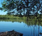Venta de Isla en Bocas Del Toro