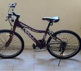 Se Vende Bicicleta Rali Tornado 24''