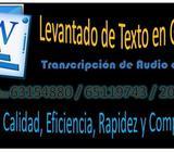 LEVANTADO DE TEXTO WORD