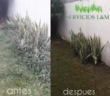 Mantenimiento de Áreas Verdes Residenciales