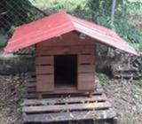 Casa de Perro en Madera