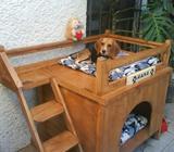 Casa de Mascotas