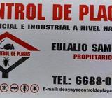 Control integral de plagas urbanas