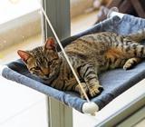 Hamacas para Gatos, Ventanas Y Puertas