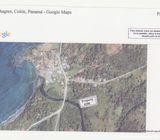 Finca en Piña, Colon 136,192 M2 Usd 1.50 m2. Alquiler $1,600